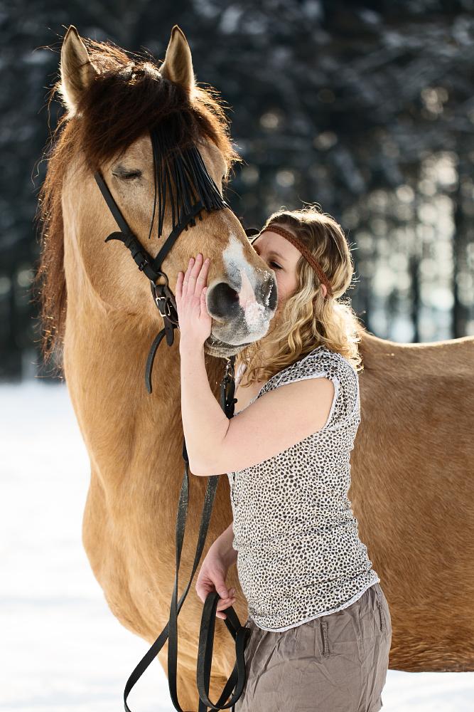 Pferde Fotografie von Soraya Häßler