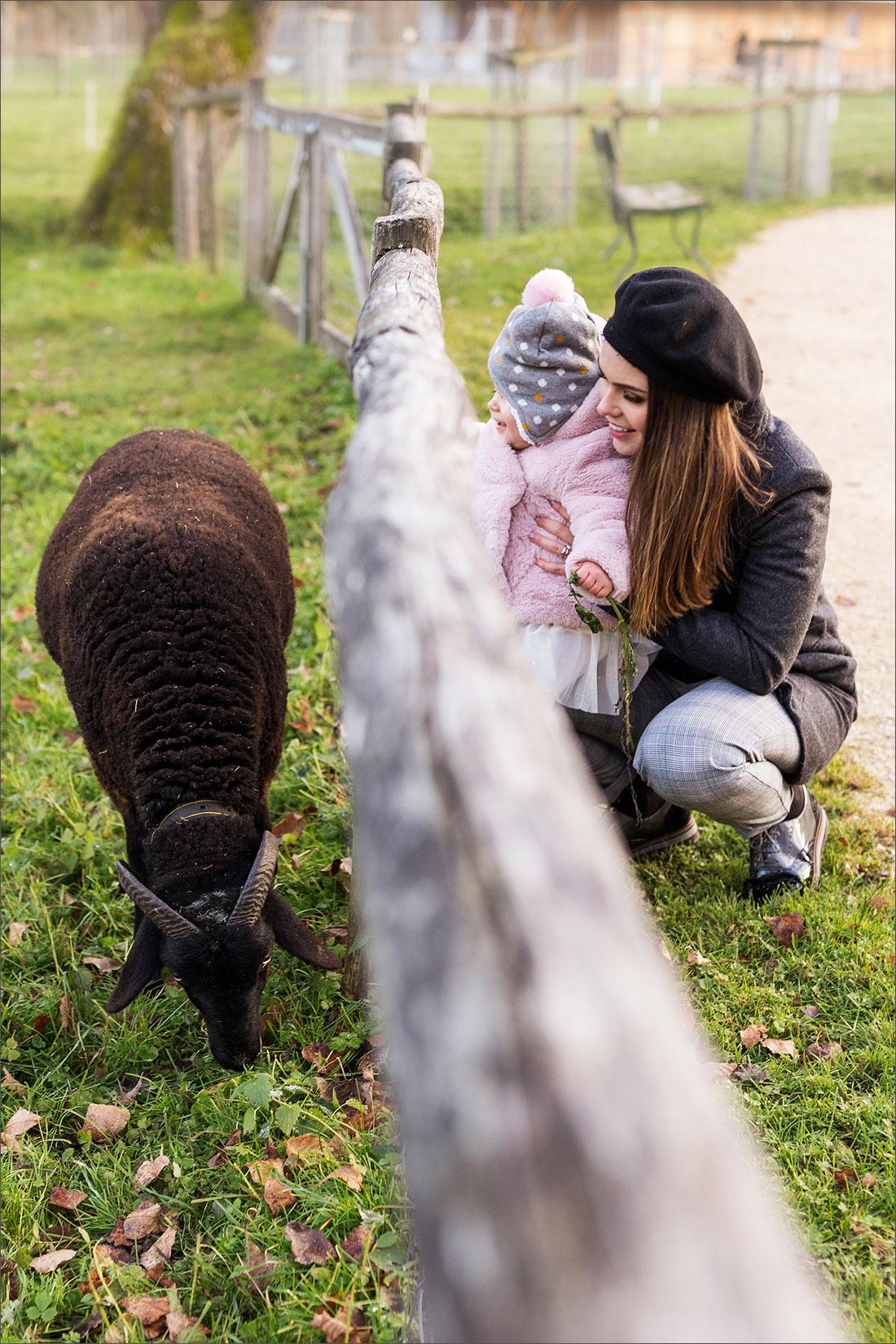 Familien Fotoshooting Basel - Merian Gärten - Schaf